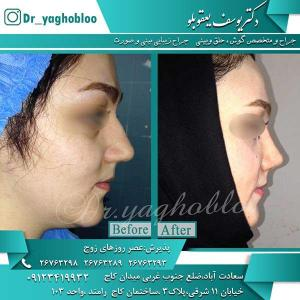 Dr-Yaghubloo (33)
