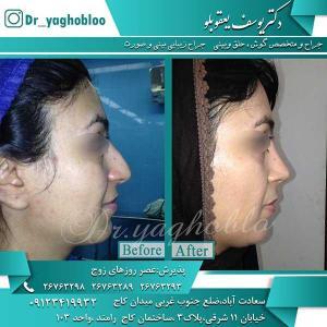 Dr-Yaghubloo (44)